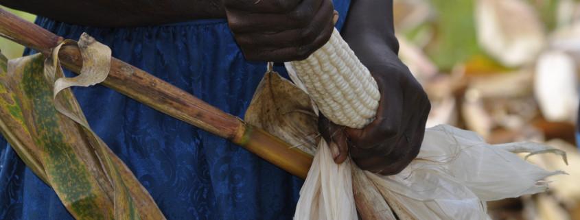 kenya-farmer